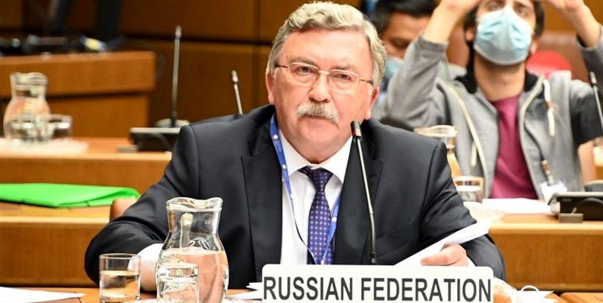 واکنش اولیانوف به زمان توقف اجرای داوطلبانه پروتکل الحاقی