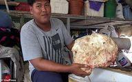 ماهیگیر تایلندی یک شبه میلیونر شد! +فیلم