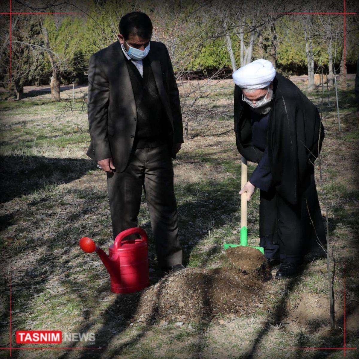 روحانی یک نهال سیب در باغ گیاهشناسی غرس کرد +عکس