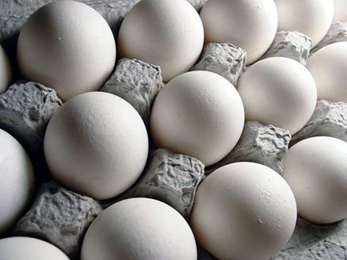 طرحی برای جلوگیری از گرانفروشی تخم مرغ