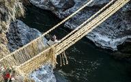تصاویر دیدنی از پل معلق از جنس علف