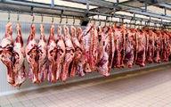 ملکی: پیش بینی کاهش قیمت گوشت نداریم