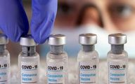 توضیحات مهم واکسن کرونا ایرانی + جزئیات