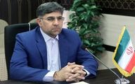 توضیحات دبیر ستاد اربعین درباره توزیع ارز به زائران