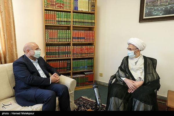 تصاویر: سفر رییس مجلس به قم و دیدار با مراجع عظام تقلید