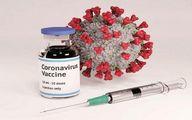 کارت دوزبانه واکسن کرونا چگونه صادر می شود؟ + لینک ثبت نام
