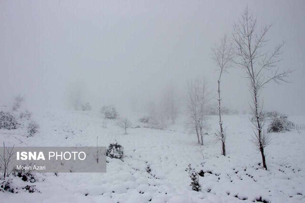 پیش بینی وضعیت هوا برای تعطیلات تهران