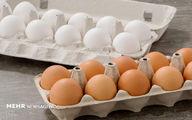 قیمت تخممرغ در میادین میوه و ترهبار تهران ارزان شد