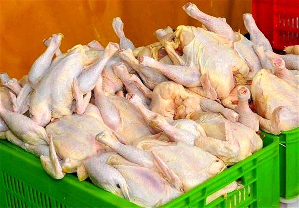 عامل اصلی آشفتگی در بازار مرغ چیست؟