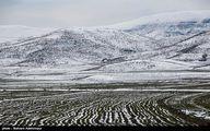 استقرار هوای سرد زمستانی از شنبه آینده/گرمترین و سردترین نقطه ایران