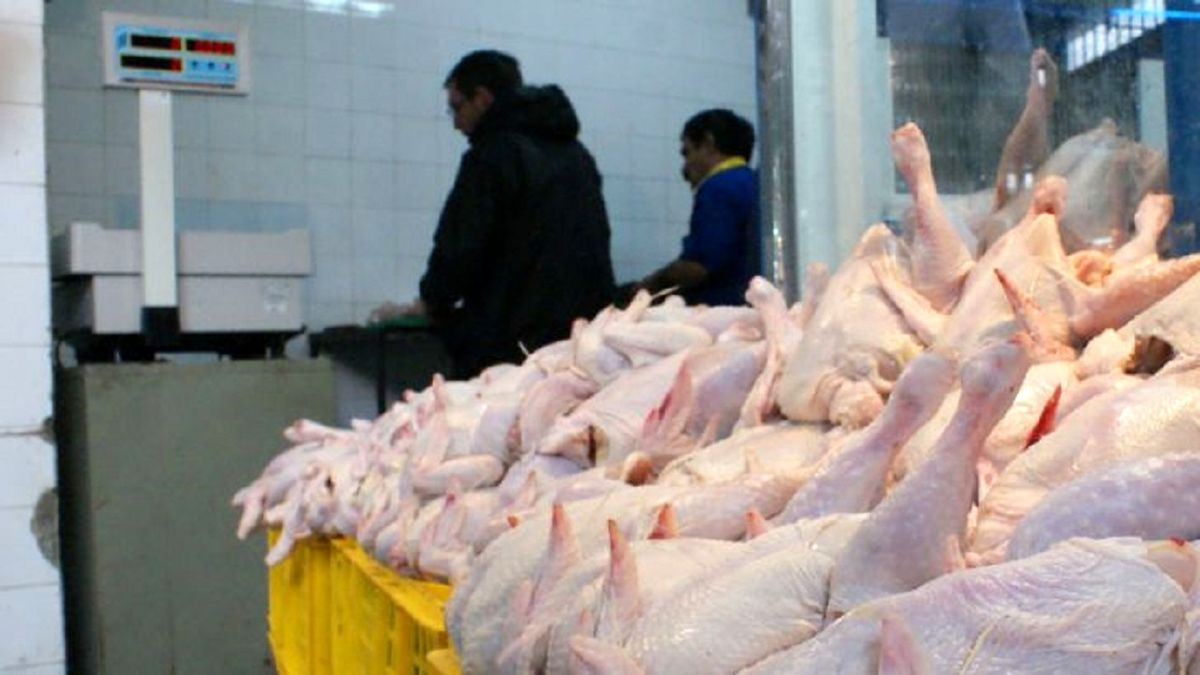 منتظر کاهش قیمت ها در بازار مرغ باشیم؟