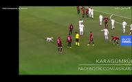 فیلم: ورود ناگهانی یک سگ به زمین فوتبال و باقی ماجرا