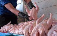 عامل اصلی کمبود عرضه مرغ چیست؟