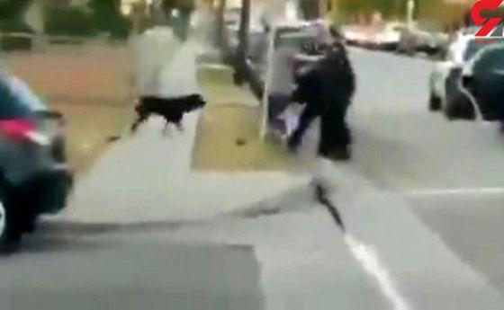 قتل وحشیانه سگ/این فیلم کاربران اینترنتی را شوکه کرد