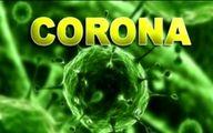 ویروس کرونا با شروع فصل تابستان مهار میشود؟