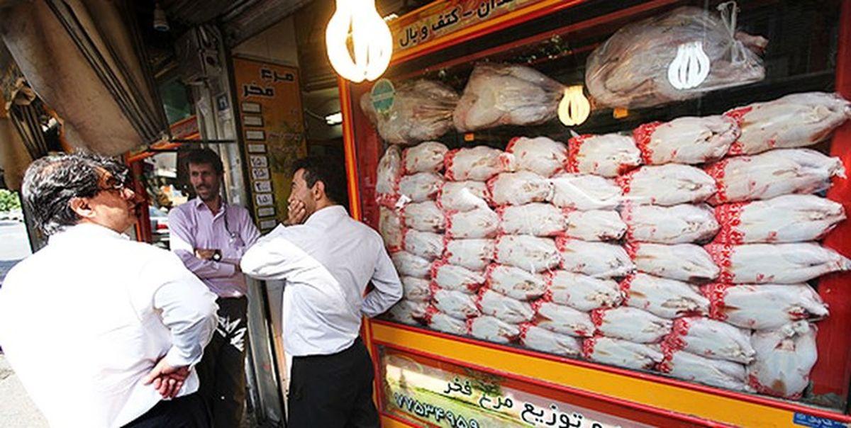 قطعه فروشی مرغ در خرده فروشها ممنوع شد