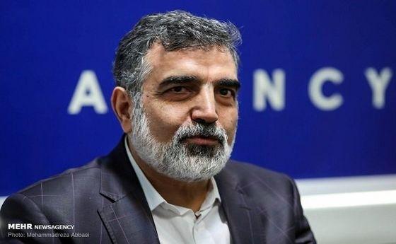 روایت کمالوندی از پیشنهاد آژانس به ایران