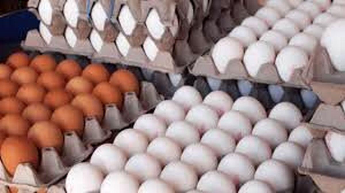 گرانی چشمگیر تخم مرغ در فروشگاه های موادغذایی!