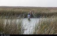 تصاویر: ماهیگیری در حاشیه جاده شادگان - اهواز