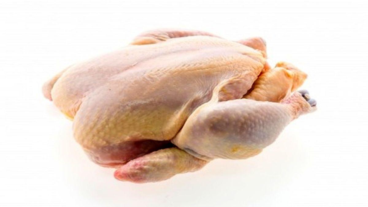 قیمت فعلی مرغ در بازار