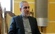 واکنش سفیر ایران  به تروریستی خواندن انصارالله یمن