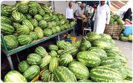 هندوانه به قیمت امارات!/هر کیلو میوه صادراتی چند؟
