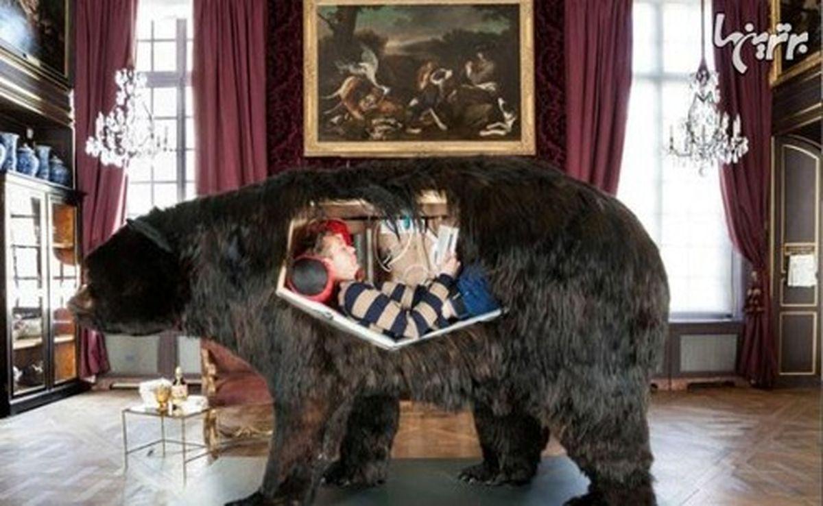 زندگی یک دختر داخل جسد خرس! +تصاویر