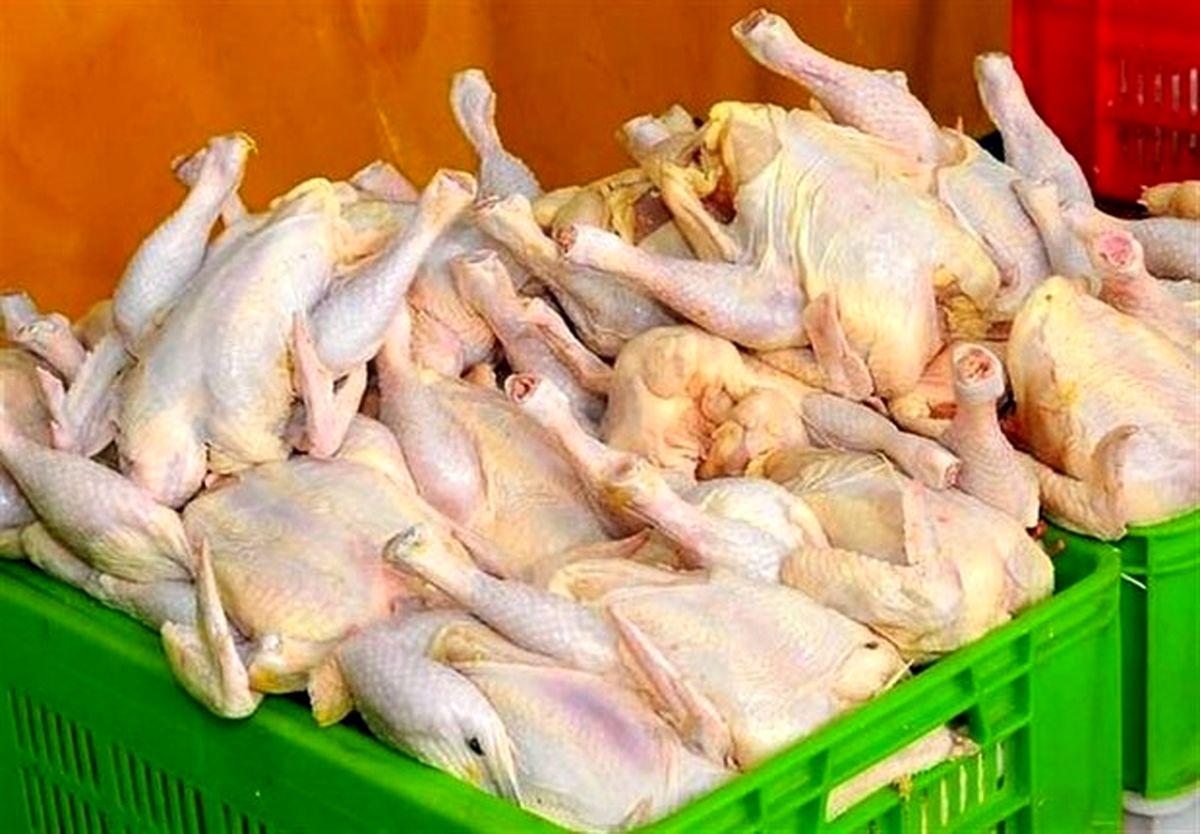 قیمت واقعی مرغ در بازار