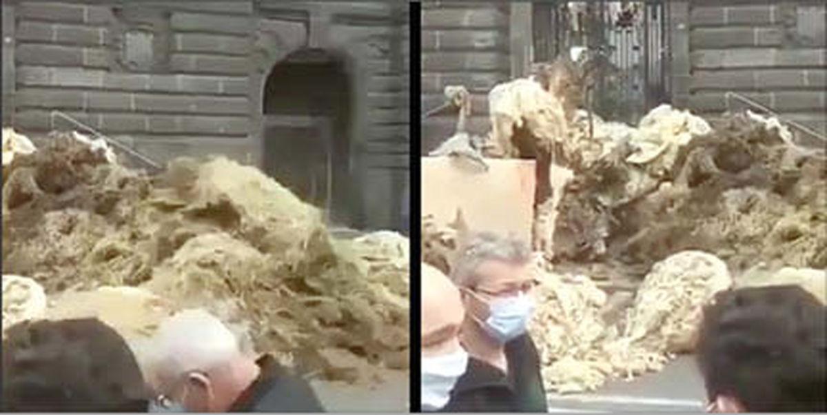 اعتراض دامداران فرانسوی با کود گاوی!  +عکس