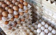 اعلام ضوابط واردات تخم مرغ در سال ۹۷ +سند