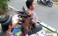 حجامت با شاخ گاو در اندونزی +تصاویر